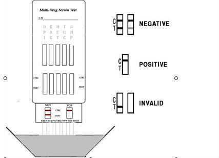 multi drug screen description.jpg