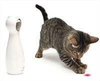 Поставки Cat здоровье экспорт