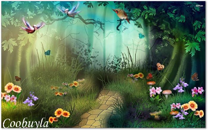 rainforest butterfly wallpaper - photo #27