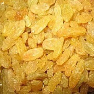 Golden Raisin,the biggest raisin factory