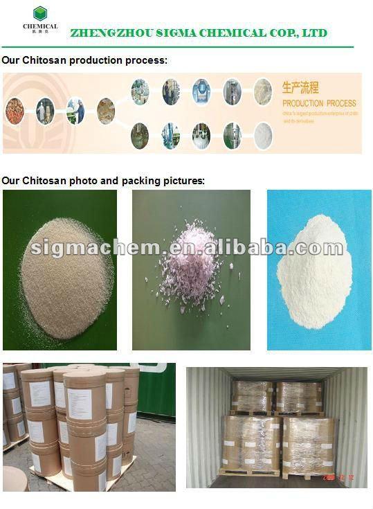 Chitosan/chitosan powder