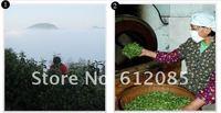 Цветочный чай YLD-hsmf002