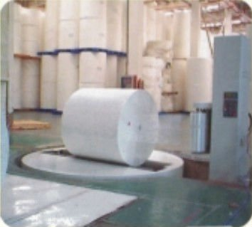 eel stretch wrapping machine packaging machine