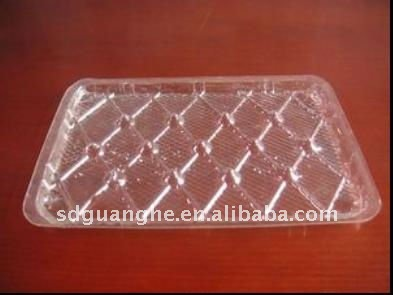 transparent disposable plastic food tray