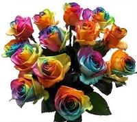 Новая Радуга 100шт Роза семена многолетних цветов радуги розы китайской розы семена дома садоводства падение судоходство, iz0002