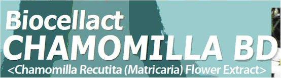Chamomilla Recutita (Matricaria) Flower Extract Biocellact CHAMOMILLA BD Natural Cosmetic Ingredient