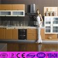 Gabinete de cocina modular profesional personalizada