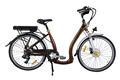 Eléctrica de la ciudad de la rueda de la bicicleta.