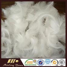 Pato blanco lavado 2-4cm pluma