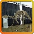 fósiles prehistóricos en venta