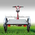 e triciclo para adultos