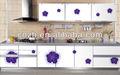 Cocina moderna fabricante cabainet( gabinete de la cocina, armario ropero)
