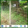 Baja precio de cabra valla de granja ( proveedor )