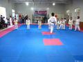 eco friendly cualquier color espesor de taekwondo gimnasio alfombras para las artes marciales