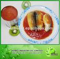 mar de la china caballa en can en salsa de tomate