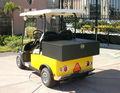 Mini / smart / dos asientos carrito de golf con el CE / solar