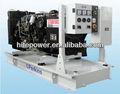proveedor de china generador eléctrico dinamo 1006tg2a lovol generadores de motor