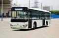 Autobús de la ciudad SHACMAN con dimensión para la venta