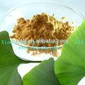 100% natural de flavonóides extrato de ginkgo biloba pó