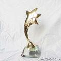 star troféu com base de cristal