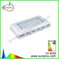 nuevo diseño de espectro completo 100 vatios led de luces de crecimiento para el cultivo de tomates certificación ce y rohs