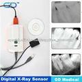 Digital de rayos X del sensor