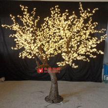 la luz del árbol