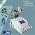 Portable Cryolipolysis de cavitación RF máquina de la belleza