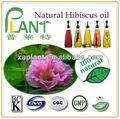 flores secas de hibisco de aceite