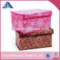 Espesa super gran caja a prueba de agua caja de matorral/caja de almacenamiento/baina caja