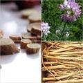 Extracto de hierbas y Extracto de astrágalo