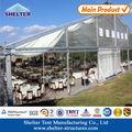 35x40 chapiteau en PVC transparent Couverture en PVC transparent