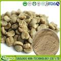 Baja precio de grano de café verde precio, el ácido clorogénico de fabricante de cgmp