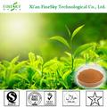 soluble en agua orgánica extracto de té verde para alimentos y bebida