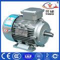 Trifásico AC Motor eléctrico