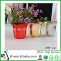 mini fibra de planta ornamental maceta de flores