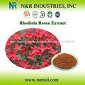 de rhodiola rosea extracto de la raíz en polvo y salidroside rosavins
