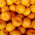 2013 Nacimiento de Orange