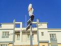 hummer eje vertical residencial de aerogeneradores para la venta