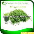 natural alimentaciónecológica natural de color verde en polvo de hierba