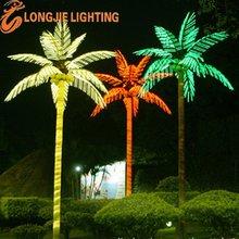 iluminado de coco del paisaje del árbol