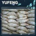 peces de sardina congelada