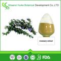 natural de extracto de romero el ácido rosmarínico en polvo