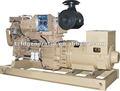 CCS, BV Certificado --- generador diesel 300KW marino / grupo electrógeno para la venta caliente