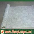 Fiberglass Chooped Strand Mat(CSM)