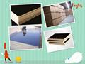 El 1250x2500x18mm negro de alta calidad/película marrón enfrentan madera para la construcción