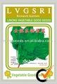 dh la buena calidad verde de alto rendimiento almightiy semillas de espinacas