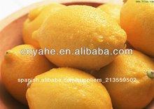 limón de sabor en polvo para la alimentación