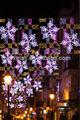 Al Otro Lado de la Luz de Calle para la Decoración Exterior de Nieve