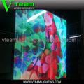 Muro cortina de led de visualización/montado en la pared de la pantalla led/de la pared de vidrio de la pantalla led